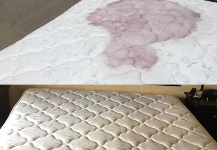 Mattress Cleaning Springrange