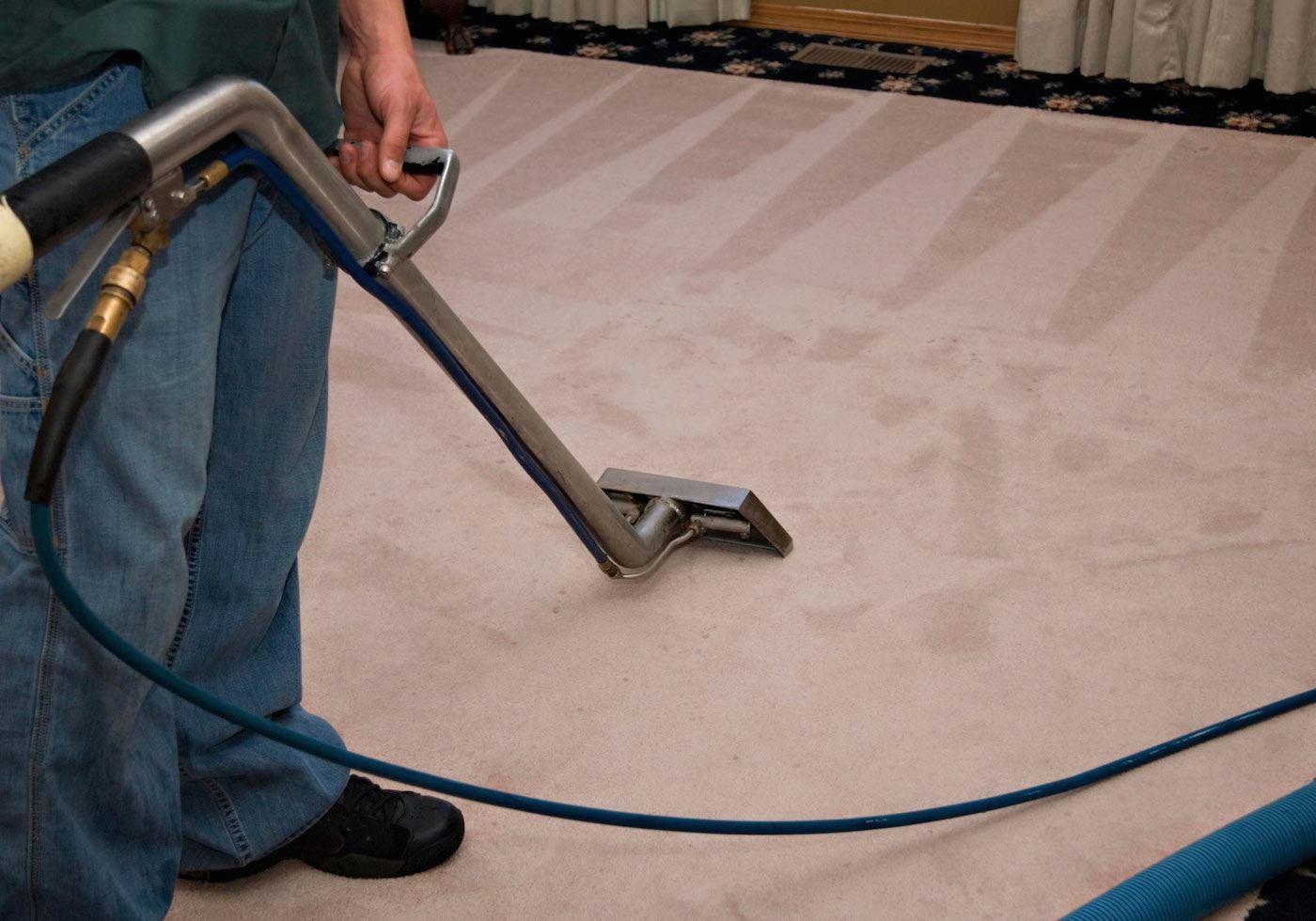 carpet caring tips