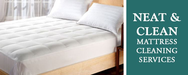 Neat & Clean Mattress Cleaning Goldfields/West End