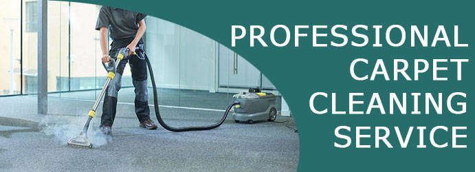 Carpet Steam Cleaning Collector
