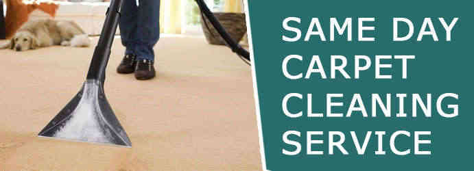 Carpet Stain Removal Cook