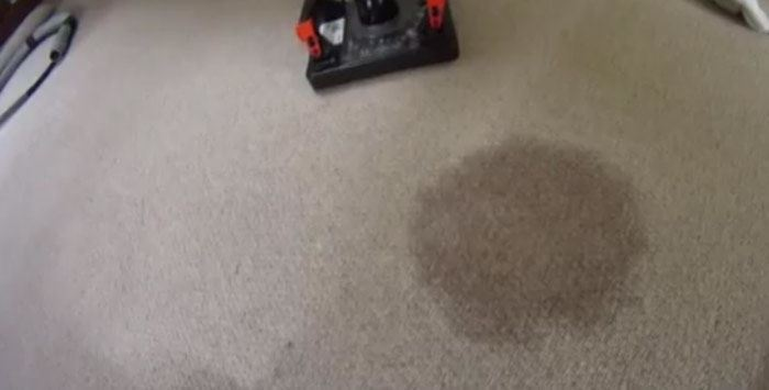 Carpet Stain Removal Woden