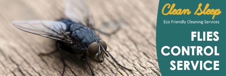 Flies Control Service