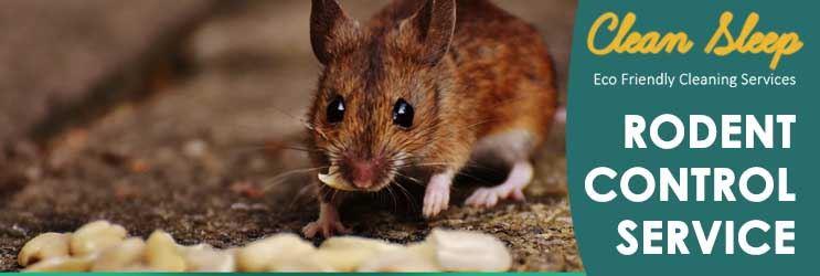 Rodent Control Service Pymble