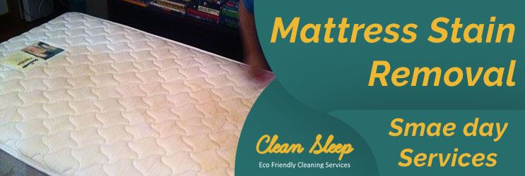 Mattress Stain Removal Services