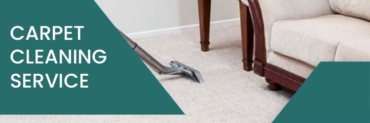 Expert carpet cleaners