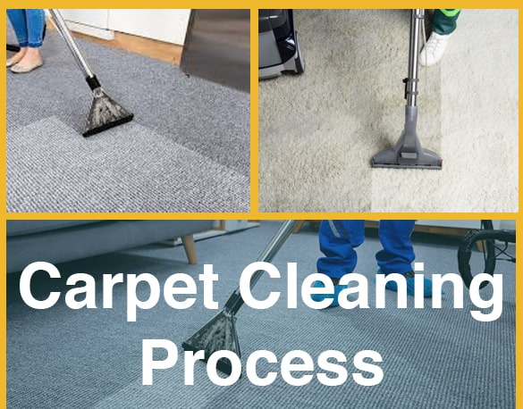 Carpet Cleaning Process Adelaide