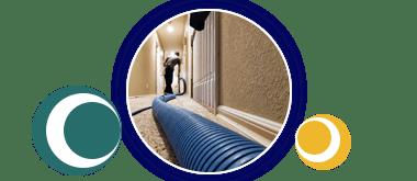 Carpet Disinfectio Adelaide