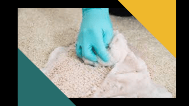 Carpet Odour Removal Services Canberra
