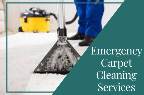 Emergency Carpet Cleaning Services Canberra