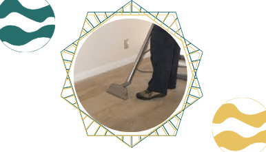 End of Lease Carpet Cleaning North Beach