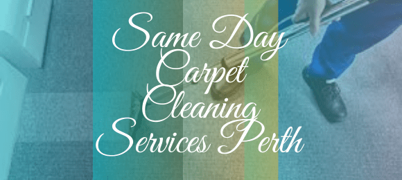 Same Day Carpet Cleaning Embleton
