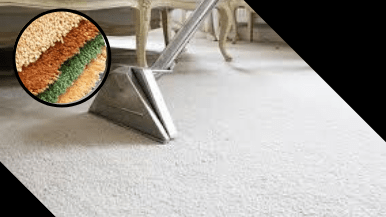 Wool Carpet Cleaning Services Canberra