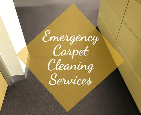 Emergency Carpet Cleaning Services belconnen