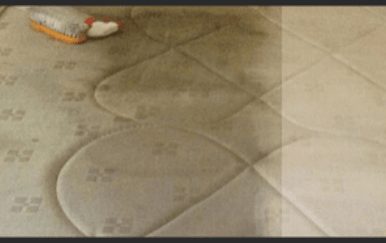 Mattress Urine Stain Removal Canberra