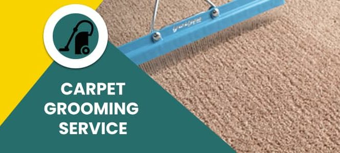 Carpet Grooming Service