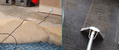 Carpet Water Damage Repai