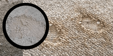 Carpet holes repair Melbourne