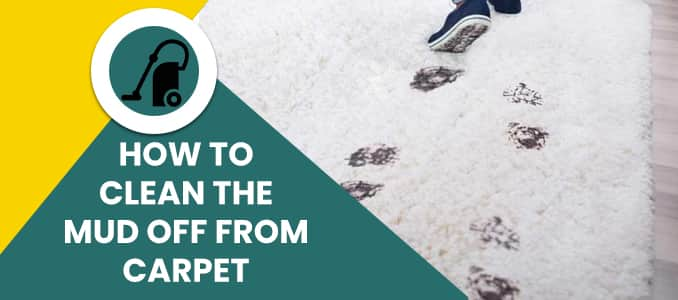 How to Clean The Mud Off from Carpet