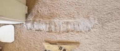 Pet Damage Repair Canberra