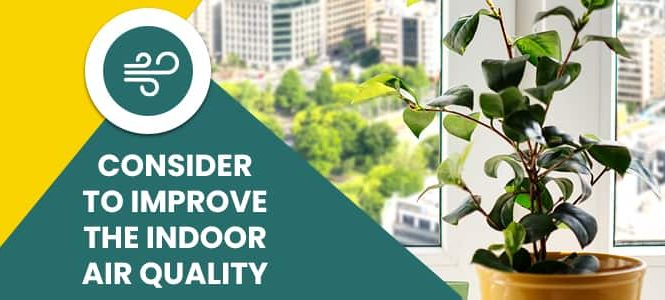 Consider to Improve The Indoor Air Quality