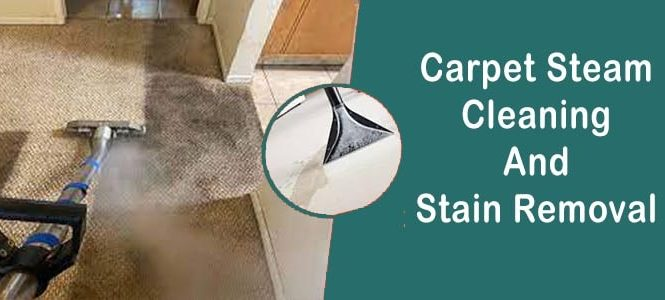 Carpet Steam Cleaning & Stain Removal