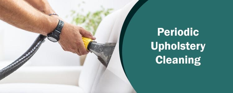 Periodic Upholstery Cleaning